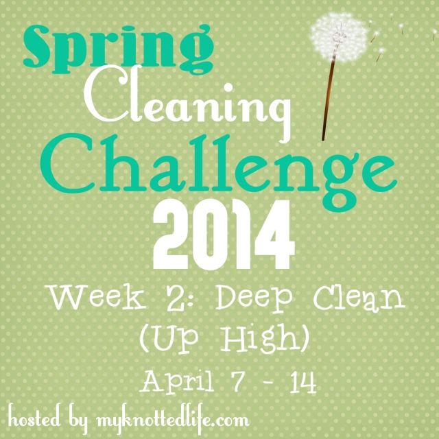 Spring Cleaning Challenge week 2 new